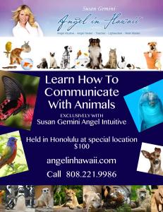 Animal-Communicationsingle