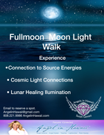 fullmoon_moonlightwalkrevised(web)