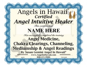 2013 angel  healer cert