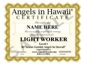 Advance Light Worker Certification
