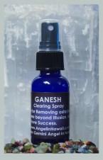 Ganesh Spray
