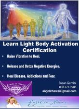 Light Body Certification